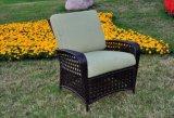 Mobilia di vimini del rattan del sofà del rattan della mobilia della Tabella esterna di vimini della presidenza