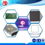 RGB 옥외 LED 영상 Wall/LED Sign/LED 스크린 옥외 LED 복각 전시 P10 LED 모듈