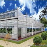 El tipo invernaderos del zigzag de China del Multi-Palmo con el sistema de ventilación se aplica en área caliente