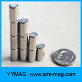 De verkopende Magneet Subwoofer van het Neodymium van de Cilinder Kleine
