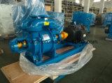 Wasser-Ring-Pumpe für Vakuumkonzentration