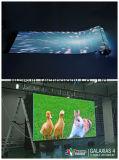 Schermo flessibile 6mm di disegno creativo LED con il montaggio magnetico