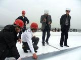 Membrane imperméable à blanc Tpo 1,5 mm pour système de toiture à simple couche avec certificat ISO