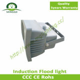 40W Induction Flood Light mit 5 Years Warranty
