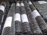 高品質の低価格の電流を通された六角形の金網