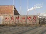 중국 Shandong Lvhuan Manufacture Supplier 350kw Biomass Gas Generator/Biogas Generator