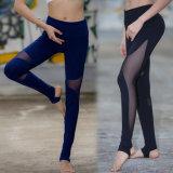 熱い販売の女性カラー網のヨガのズボンの適性のヨガの摩耗