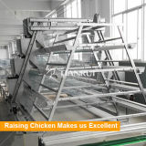 층 보일러를 위한 유형 자동적인 건전지 닭 감금소