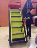 Escada do Stairway da escada de Jacobs (SK-908)