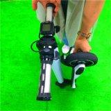 250W 도시 차 Foot Kick의 Foldable 전기 Hoverboard 스쿠터 탐