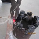 De draagbare 15kw het Verwarmen van de Inductie Staaf van het Titanium van de Apparatuur Onthardende voor Afrika