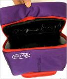 A isolação adulta do curso pode congelar o saco fresco do refrigerador do piquenique do almoço