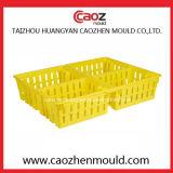 Heiße verkaufende Plastikgeflügel-Rahmen-Form in China