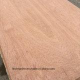 Contre-plaqué spécial d'eucalyptus de la taille 12mm avec le faisceau de peuplier