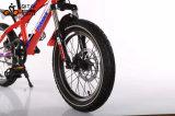 Neues populäres Kind-Fahrrad für 8 Jahre alte Kind-