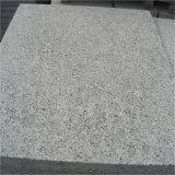 Shandong Qixia 회색 화강암 G341 포석