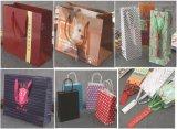 Sacchetto del Kraft/sacchetto del vino/sacchetto di vestiti/sacchetto di acquisto/sacco di carta/sacchetto del regalo