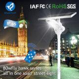 Lampada di via solare di alto potere IP65 con la batteria Lifeo4