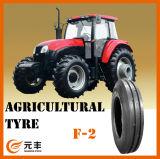 Landwirtschaftlicher Gummireifen-Traktor ermüdet 5.50-16, Muster F2, mit Eu-Beschriften, Qualität mit niedrigem Preis