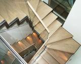 Escadaria contemporânea com a longarina revestida pó, sistema de trilhos de vidro, etapa da escada da folhosa, conceito aberto do montante