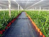 Tela preta tecida fabricante da barreira do controle de Weed