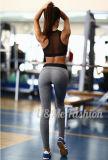 Гетры обмундирования гимнастики женщин & износ спортов пригодности установленной йоги тельняшки идущий