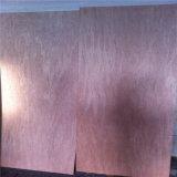 Contre-plaqué de peau de porte de Bintangor de catégorie de Bbcc avec le noyau de peuplier