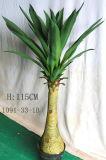 Plantas y flores artificiales del agavo Attenuata (GU-JF647)