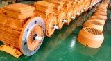 motore di alluminio Blocco per grafici-CA di 0.75kw-2 Pole-2800rpm