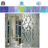 Patterned / Printing / Figure / Rolled / Art Glass Door Glass para Decoração