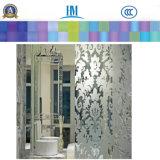 Modelado / Impresión / Figura / Rolled / Art Ducha Puerta de vidrio para la decoración