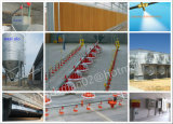Poultry automatico Control Shed Equipments per Broilers