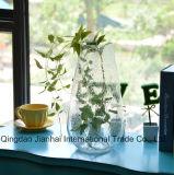 Vaso di fiore di vetro del vaso della bocca larga con la bolla di aria