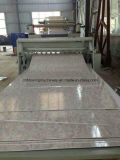 Marble artificiale Sheet Production Line/Extrusion Line, PVC Sheet Production di Wall Panel