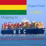 Frete de oceano do remetente de frete da logística do agente de transporte de China a Santa Cruz, La Paz, Cochabamba
