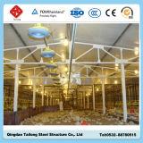 Il pollame pre d'organizzazione poco costoso dell'azienda agricola di pollo della struttura d'acciaio alloggia