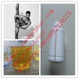 Muskel-Wachstum-Ausschnitt-Schleife-Steroide IS 351 CAS 53-39-4 Lonavar