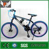 Eのバイクの工場供給の電気自転車のハブモーター新式の2016年