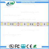 El CE impermeable aprobó la tira caliente del blanco LED de SMD5050 12V