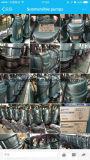 Bombas de água submergíveis elétricas de Qdx1.5-17-0.37f com interruptor de flutuador (TIPO de DAYUAN)