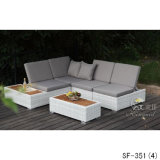 Sofá de la rota del PE, muebles al aire libre, Sf-351