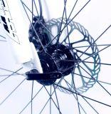 中国の工場卸売価格のアルミニウムフレーム工場26インチのマウンテンバイク21の速度のニンポーの自転車の