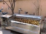감자 청소를 위한 세척 그리고 껍질을 벗김 기계