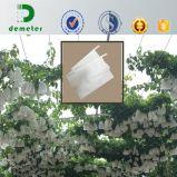 Tamaño personalizado impermeable Kraft Papel fruta crecer uva bolsa de Protección
