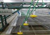 熱い若めんどりの農場のケージ装置か風邪は電流を通されて浸った(タイプフレーム)