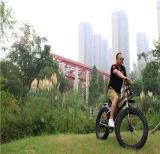Eのバイク240WのEの道の電気バイク