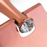 Sostenedor de papel higiénico de cobre amarillo de los accesorios del cuarto de baño (BaQaZ9005-EL-RG)
