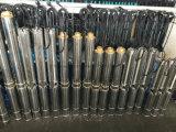 4sp2-12 Diepe goed Pomp de Met duikvermogen van het roestvrij staal