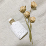 Duftstoff-Flaschen-geformtes Aroma-duftendes keramisches (AM-98)