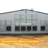 Il pollame automatico del pollo della strumentazione di controllo ambiente alloggia il sistema di ventilazione